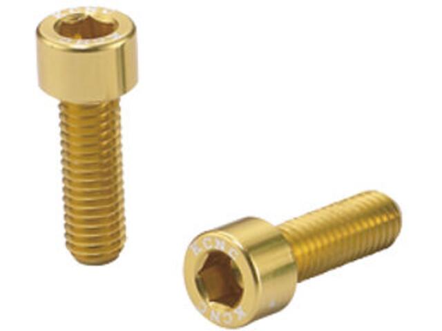 KCNC Torx Vis pour porte-bidon, gold